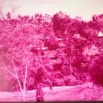 ★【バリ島 ホテル】オゲレツピンクホテルに泊まったのさ。【fave hotel SEMINYAK】