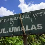 ★【バリ島 ウマラス!すいません。ウマイ店】NOOKさんに行くはずが、気がついたらスパニッシュライス食ってて、シメはMIE88になってしまったのさ。【El Garito Spanish Bar UMALAS】
