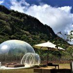 ★【Airbnbで見つけよう in BALI ②】見えすぎちゃって困るバブルホテルに泊まるはずだったのさ。【THE BUBBLE HOTEL】